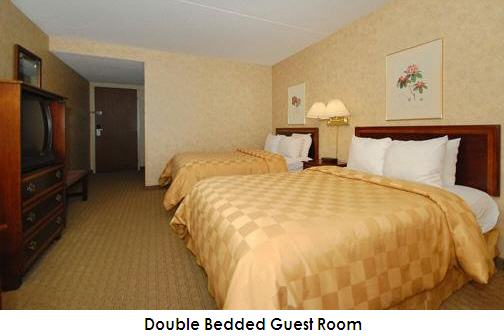 Host hotel information df16 april 2 5 2020 - All in one double bed ...