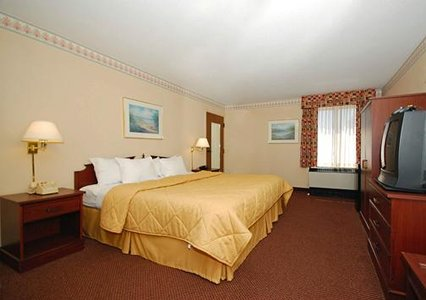 Comfort Inn room with one king bed